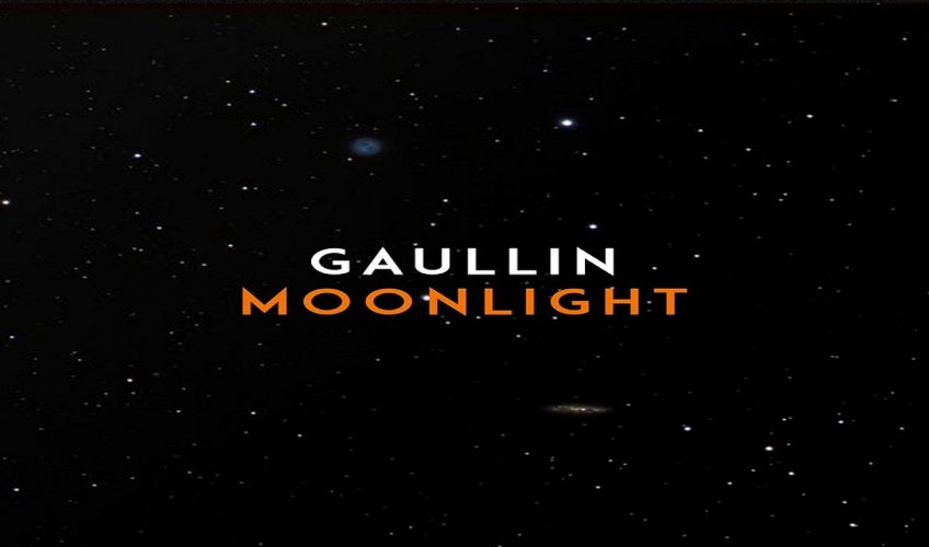 """Πρόκειται για ένα νεαρό αλλά ιδιαίτερα ταλαντούχο, μουσικό  παραγωγό  από τη Λιθουανία  με το όνομα GAULLIN. Το κομμάτι ονομάζεται  """"Moonlight""""."""